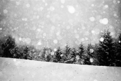 merry christmas  selection  winter landscapes bleaq