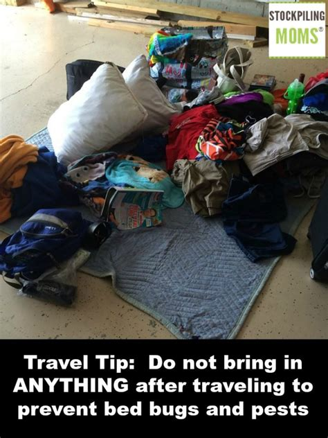 how do bed bugs travel travel tip do not bring in anything after traveling to