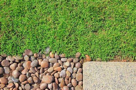 decorative pebbles    garden mulch  ground cover