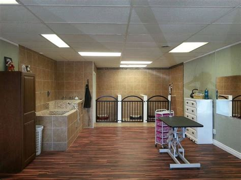 pet house dog salon 489 best images about grooming business decor on pinterest