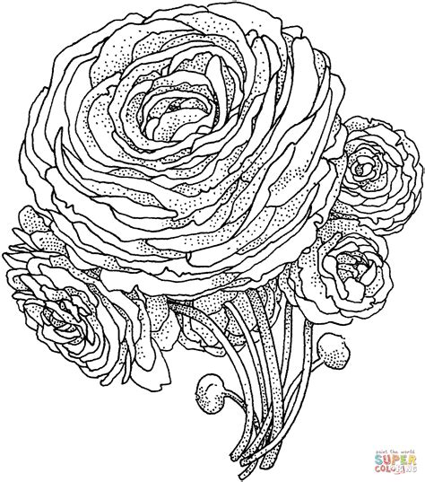 super advanced coloring pages peony flower coloring page free printable coloring pages