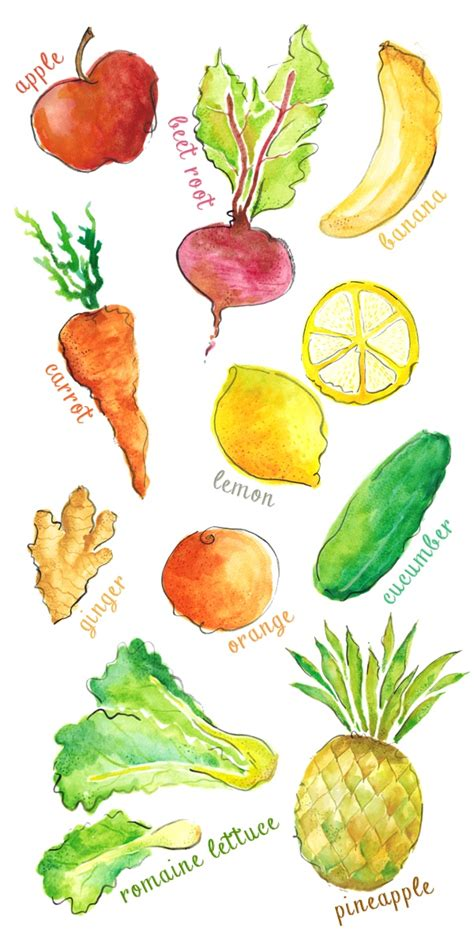 libro watercolour fruit vegetable a watercolor project for juice hut