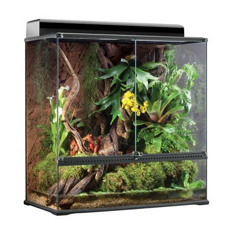 Vivarium Glass Doors 17 Best Images About Frog Vivarium On Crested Gecko Poison Dart Frogs And Tropical