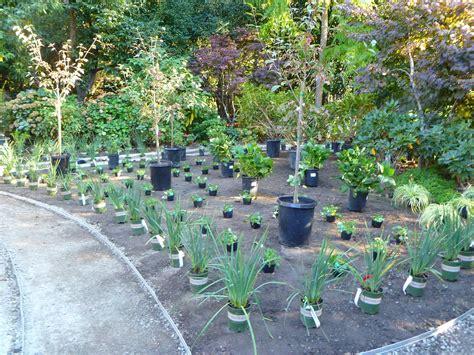 100 home landscape design tool home vegetable top 28 100 1631 shade garden landscape 100