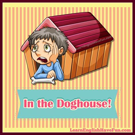 in the dog house idiom in the doghouse idiom