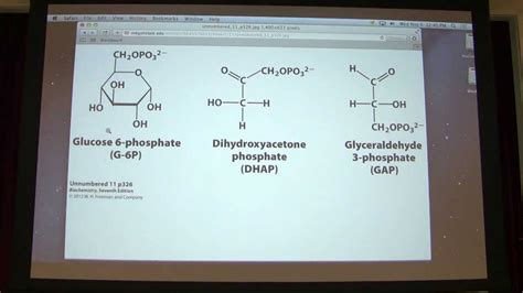 r carbohydrates for u 16 kevin ahern s biochemistry carbohydrates i