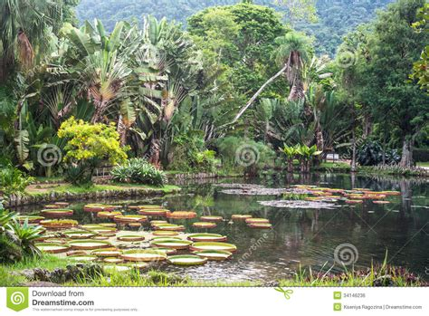 Largest Botanical Garden In World Regia The Largest Water In The World Royalty Free Stock Image Image 34146236