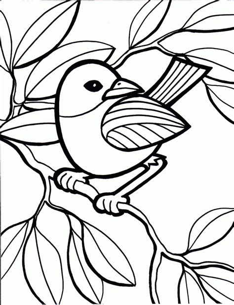 coloring pages photo pictures to colour for images
