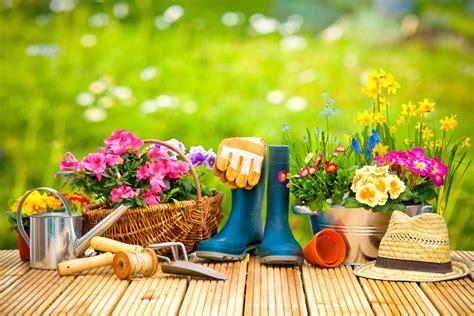 blumen pflanzen 187 wann wohin und welche - Welche Blumen Im Garten Pflanzen