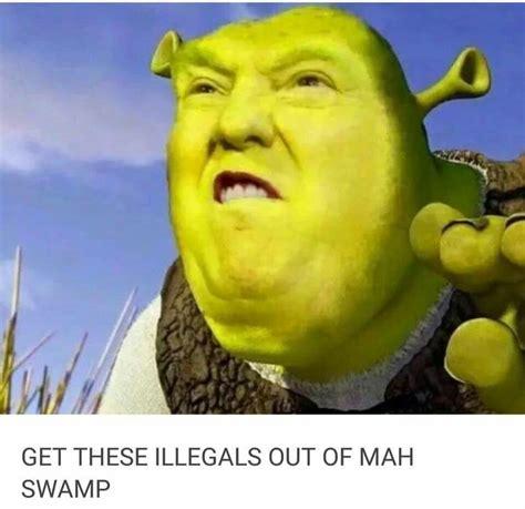 Shrek Meme - donald trump shrek on immigration soapbox pinterest