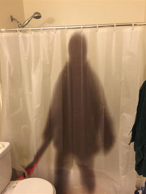 funny curtains 31 funny shower curtains that are so good they should be