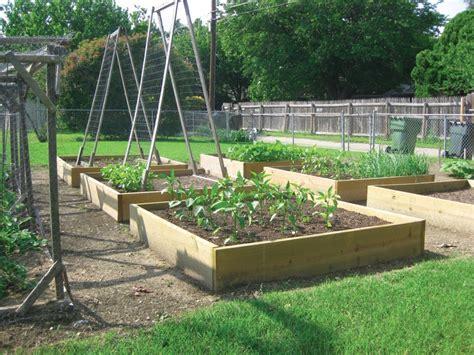 benefits of raised bed gardening benefits of raised bed gardening the garland rowlett