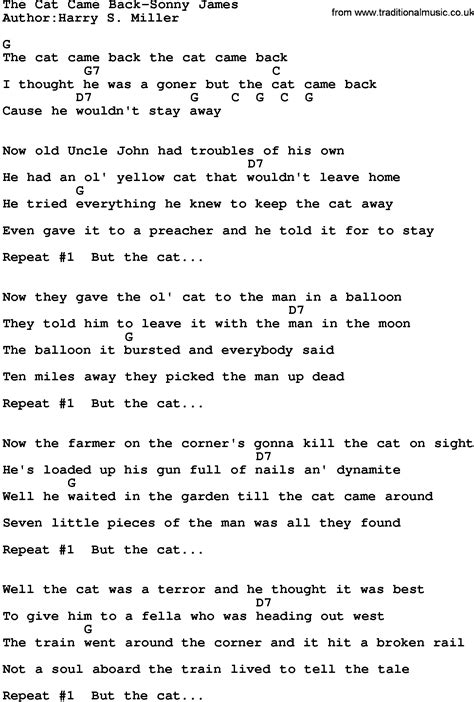 cat song lyrics country the cat came back sonny lyrics and chords