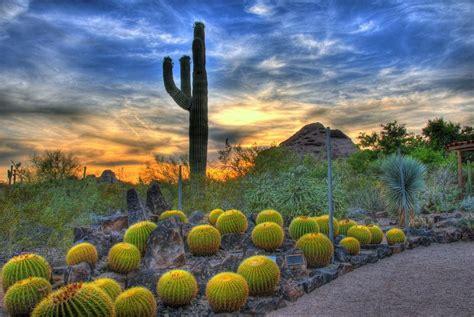 Phoenix Az Travel The Us Family Vacations Az Desert Botanical Garden