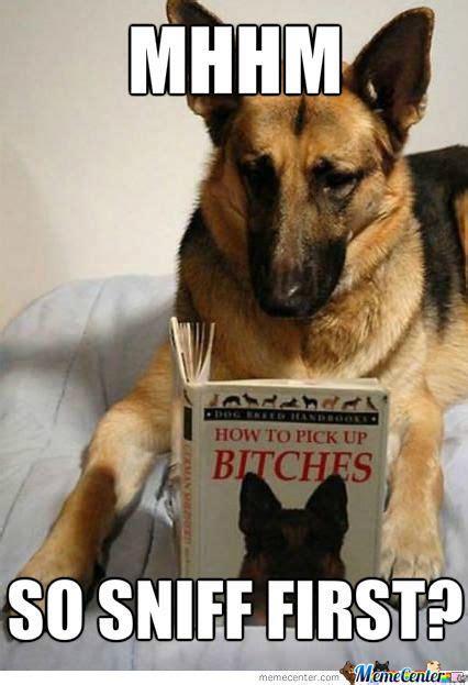 Internet Dog Meme - intelligent internet memes image memes at relatably com