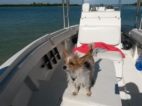 boat names with dog nautical name for a dog page 9 the hull truth
