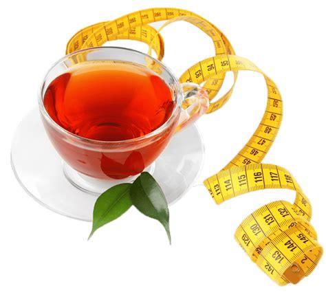 Slim Tea Detox Ingredients by Slim Tea Weight Loss Tea Detox Tea