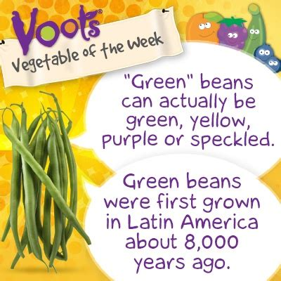 facts about green pin by voots 174 brand on voots 174 fruit vegetable of the