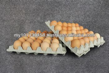 How To Make Egg Trays From Recycled Paper - recycled paper pulp egg tray buy recycled paper pulp egg
