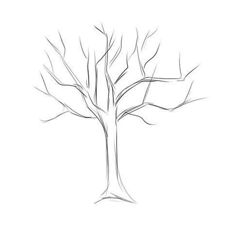 simple tree drawing how to draw a tree dr
