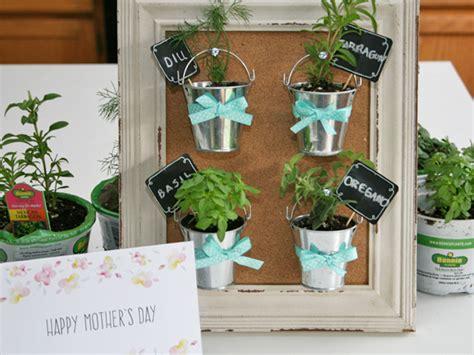 mini herb garden mother s day diy mini herb garden