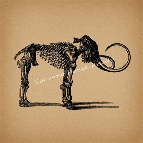 pin mammoth tattoo pictures to pin on pinterest tattooskid