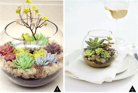 Lotus Vase Recycler Un Aquarium L Atelier Diy Du Mercredi