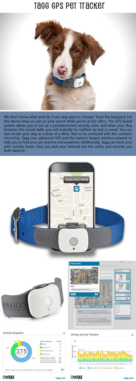Tagg Pet Tracker Phone Number Top 10 Smart Products For Your Smart Phone