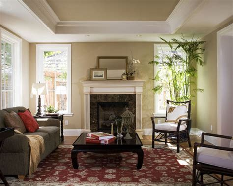 Tray Ceiling Ideas Living Room Tray Ceiling Design Home Design Ideas Pictures Remodel