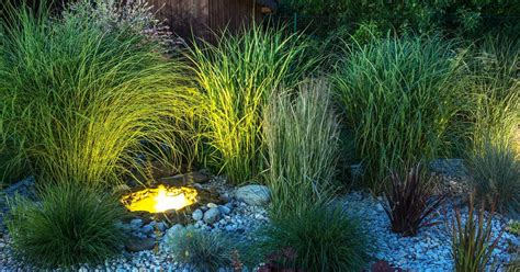 outdoor garden lights outdoor garden lighting general principles tips and ideas