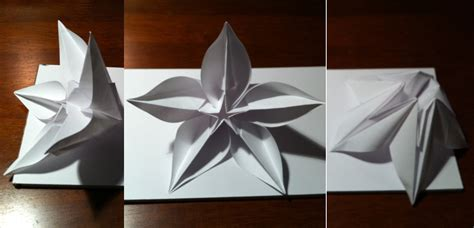 Carambola Flower Origami - carambola flowers by sprung go origami html autos