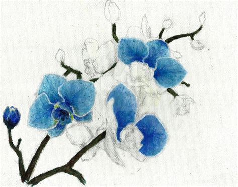 blue orchid wip by junminseung on deviantart