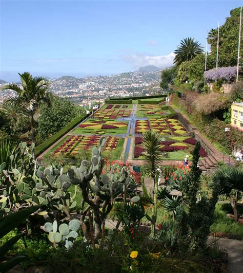 Madeira Botanical Gardens Jardim Botanico Da Madeira
