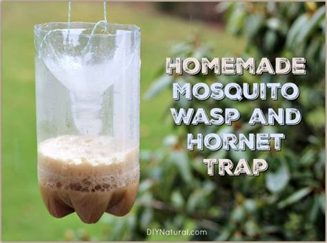 Handmade Traps - mosquito traps and wasp traps