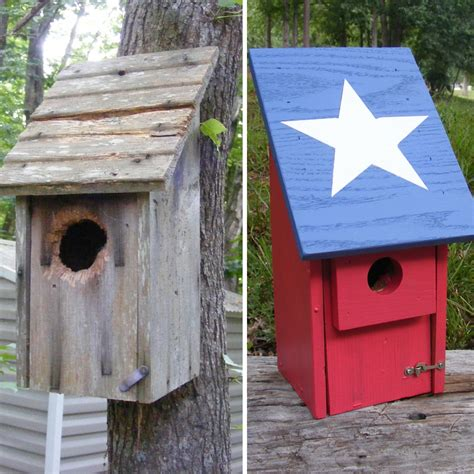 make a bluebird house