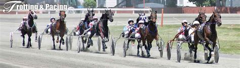 track race results harness racing race results goshen historic track new york