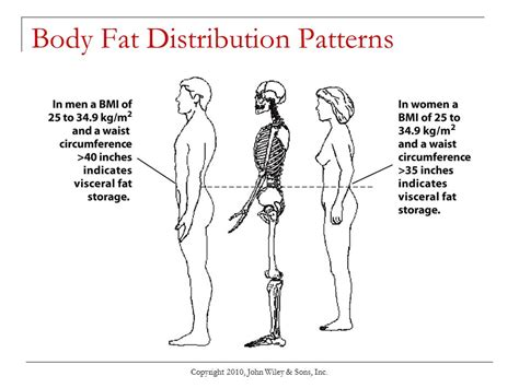 android pattern fat distribution chapter 9 energy balance and weight management ppt download