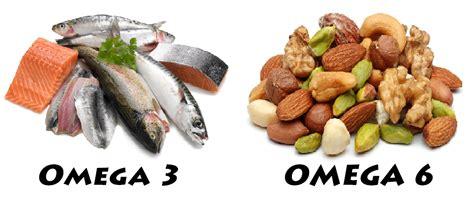 alimenti omega 6 essential fatty acids efas burns pet food