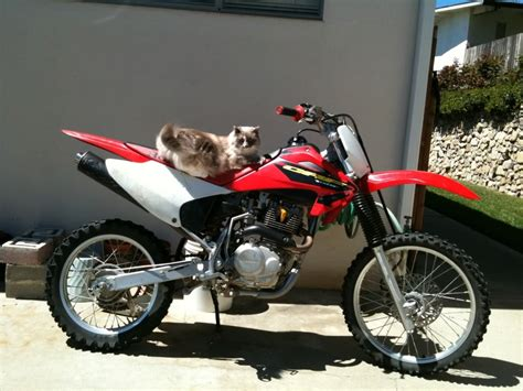 honda 150 motocross bike honda crf150f reviews prices ratings with various photos