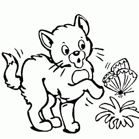 coloring pages of animals and flowers cat colouring in