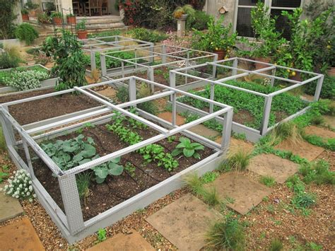 Vegetable Planterbag Raised Bed Tomato Print is coming protect those garden plants klever cages tomato cages for the ages input to