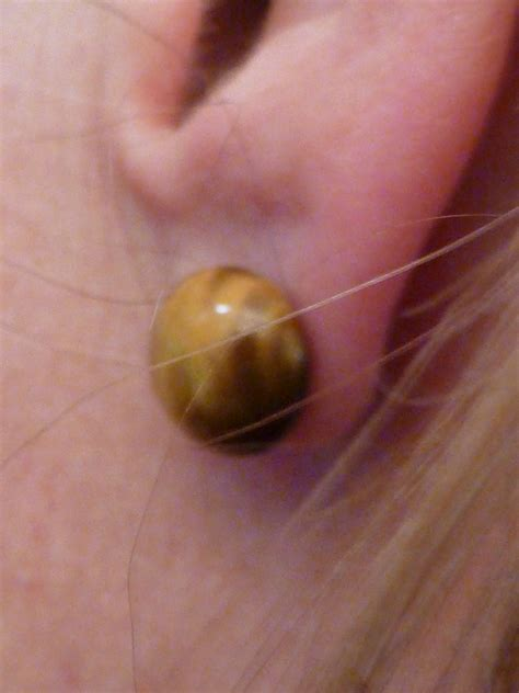 bad ear piercing infection www imgkid the image
