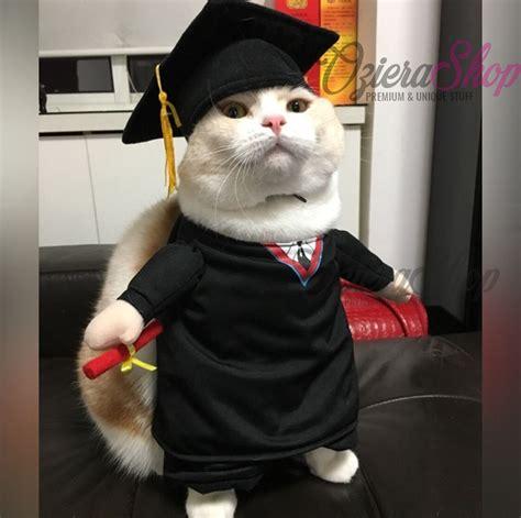 Baju Lebah Untuk Kucing Anjing Bumbleebee Kostum Hewan jual baju kucing anjing wisuda oziera shop