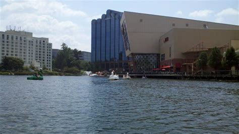 paddle boats gaithersburg md the lake picture of rio washingtonian center