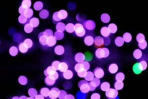 blurred christmas lights purple picture free photograph