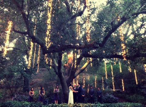 Wedding Under A Tree With Twinkle Lights Lighting Twinkle Tree Lights