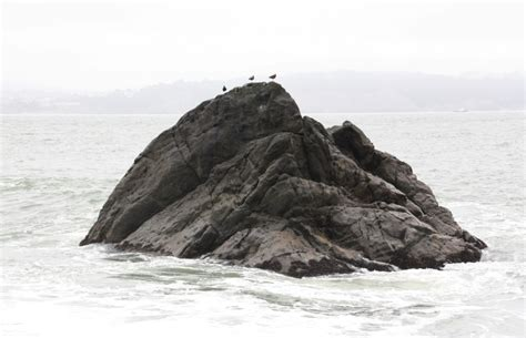 black sand california black sands sausalito ca california beaches
