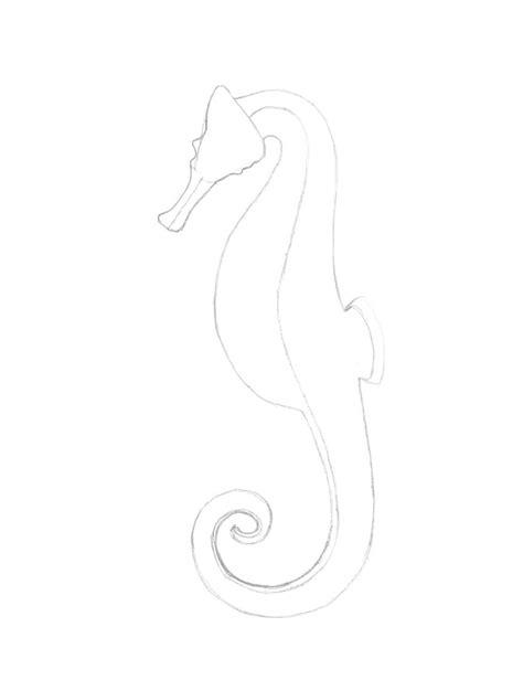 15+ Trend Terbaru Sketsa Gambar Kuda Laut Kartun - Tea And