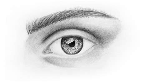 How To Draw A Realistic