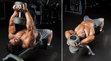 top 10 best chest exercises performance